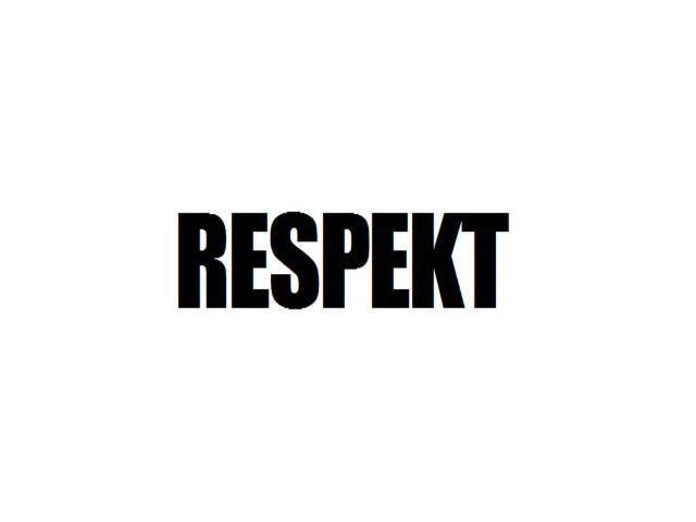 respekt332011